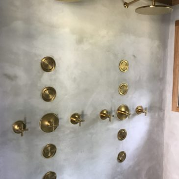 rlb_Plumbing_multifunction_shower